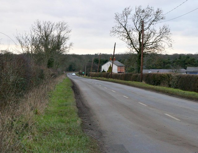 Salcey Green