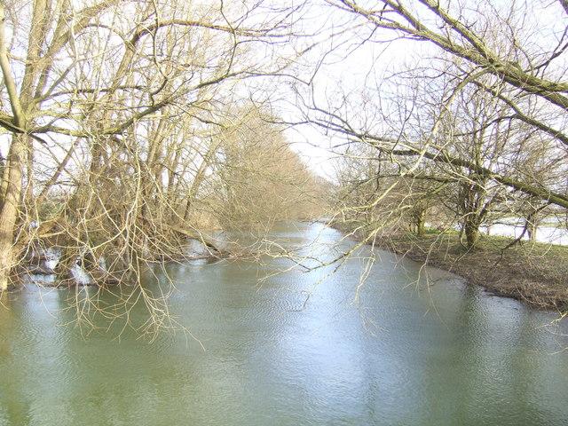 Great Brook looking east
