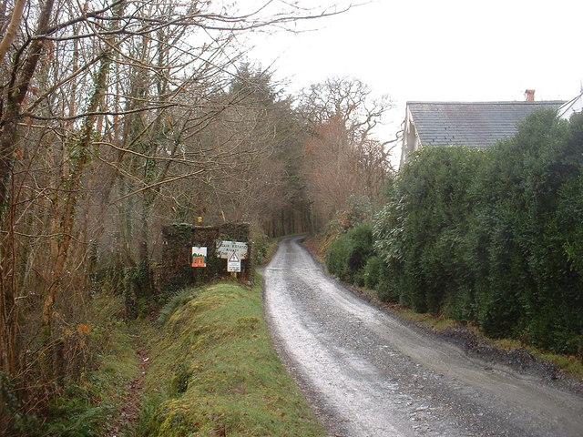 Lane at Lliwdy
