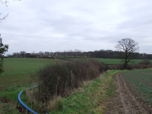 Towards Manor Farm and woods