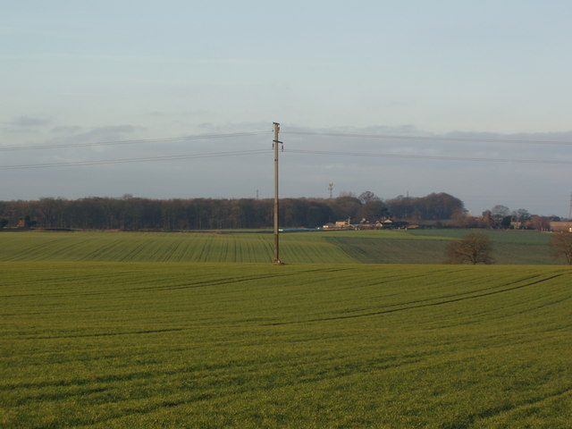 Electricity Pylon near Headley Bar