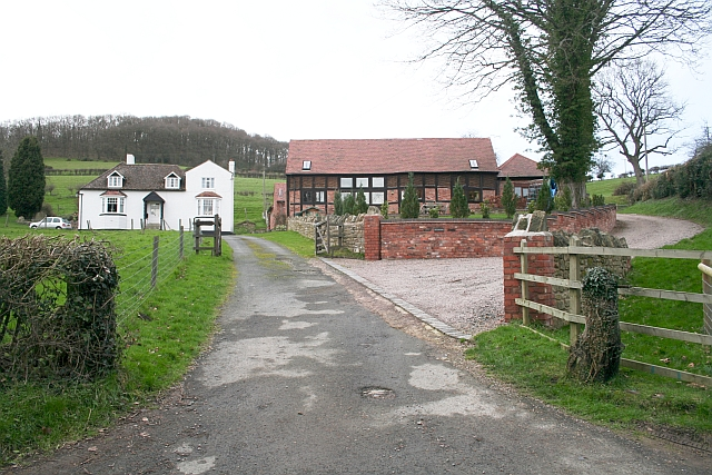 Rose Farm