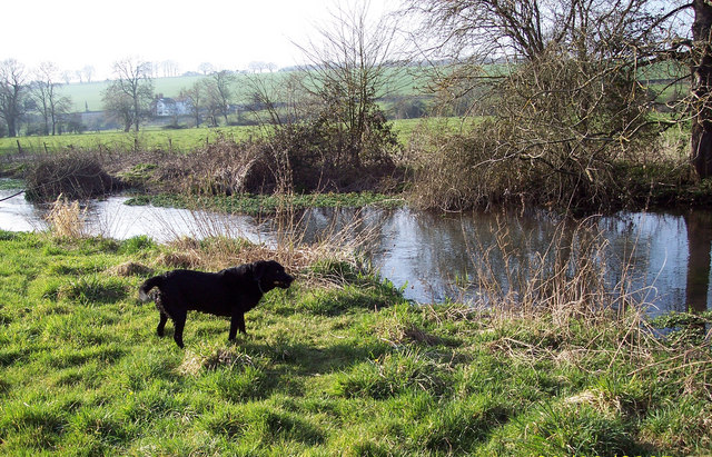 The River Ebble at Bishopstone