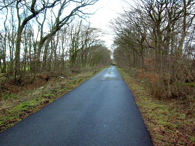 Minor Road Near Crooks