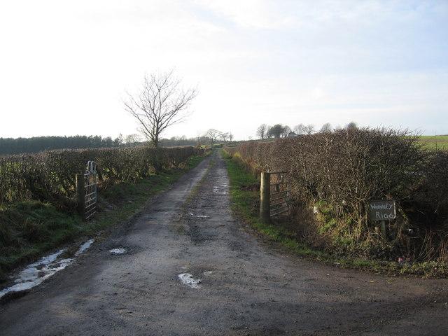 Whinnyrig Farm Road