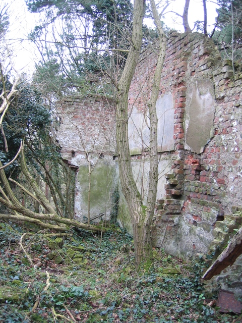 Interior of Ruin in Coed y Cra