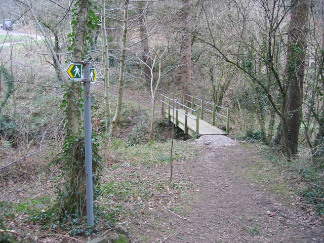 Footbridge over Nant-y-Fflint