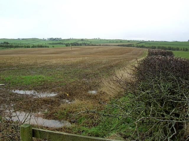 Field Near Muirhouse