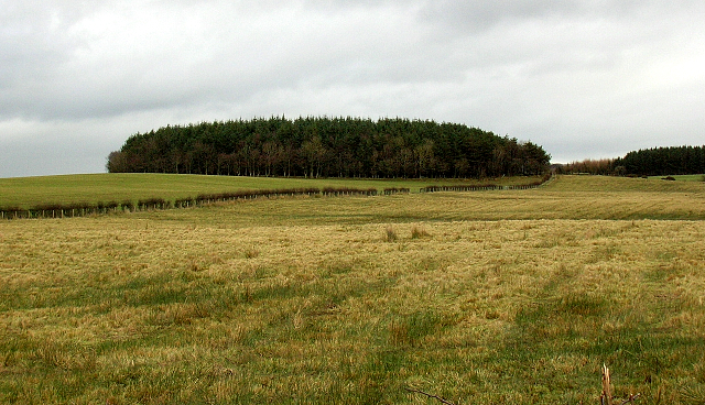 Arrothill Mount