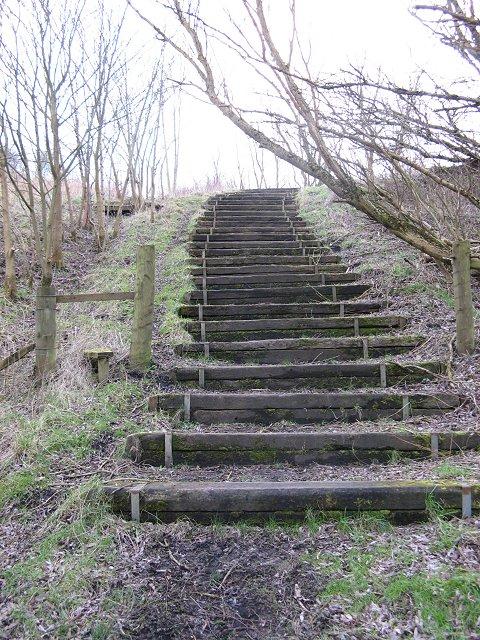 Steps, Oakbank Bing