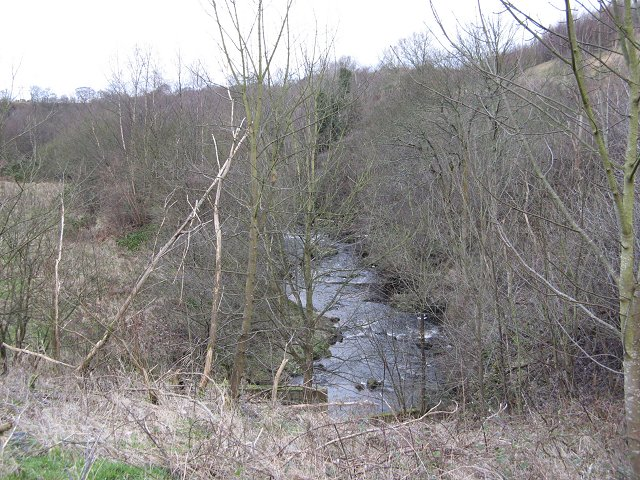 Linhouse Water