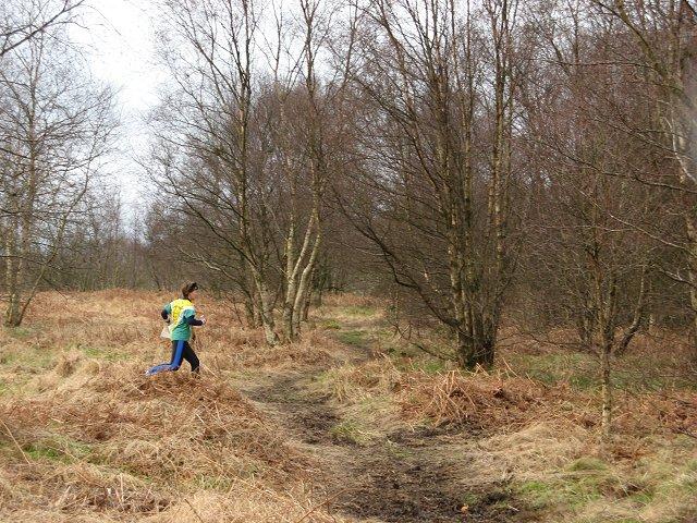 Orienteering, Calder Wood