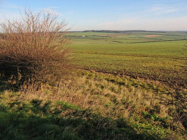 Raven Hill Farmland