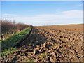 TA0565 : Ploughed Field by Stephen Horncastle