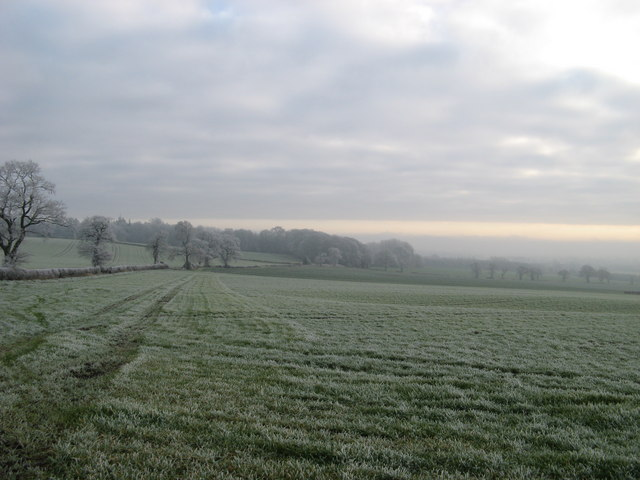 Frost in the morning.