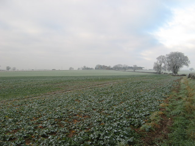 Farm on the Hill.