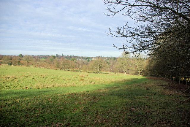 View towards Ashdown Park Hotel