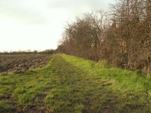 Bridleway to Debenham