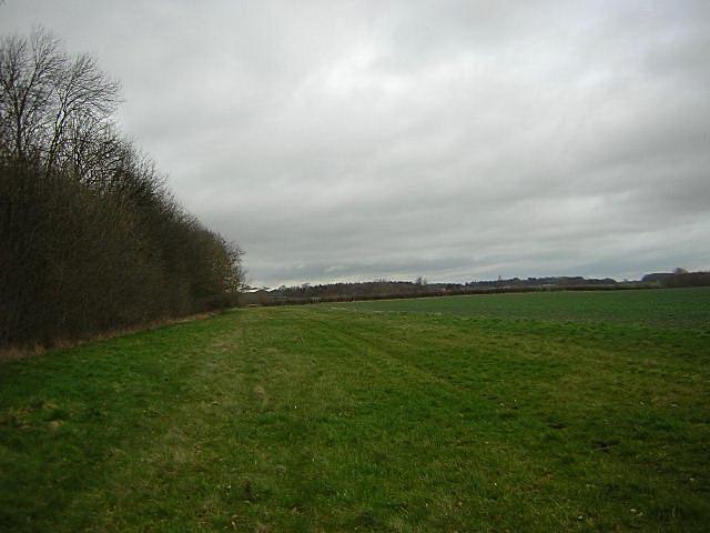 Oatlands Farm Fields