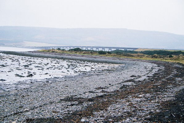 Shoreline at Cuthill Links