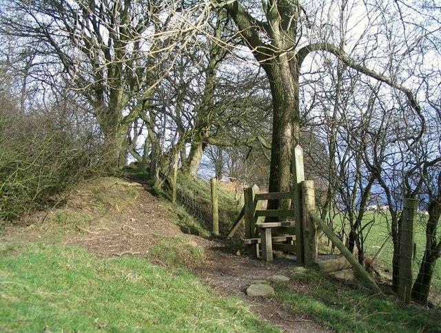 Offa's Dyke near Bronygarth