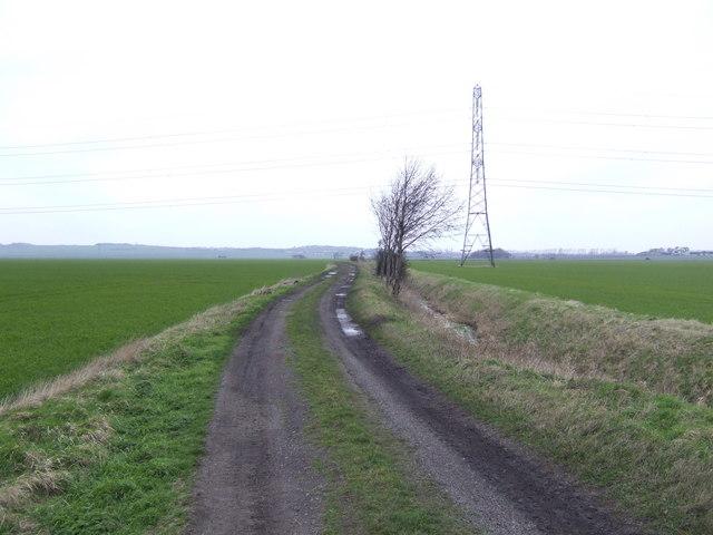 Ruddington Moor
