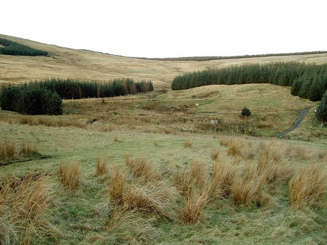 Rough Grazing and Woodland