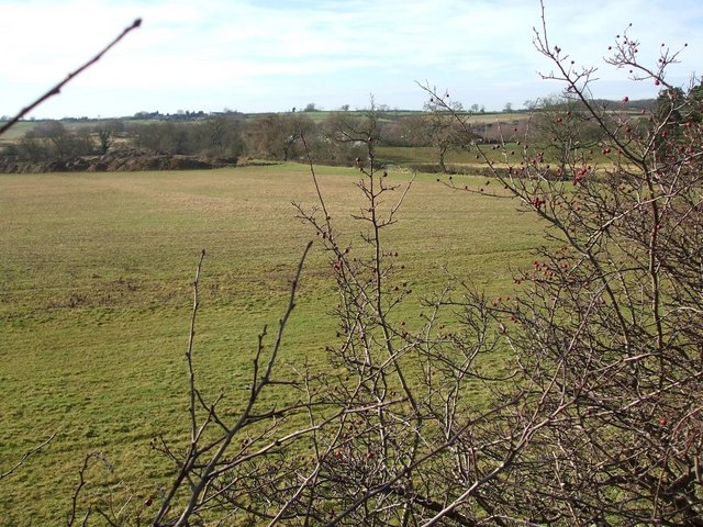 Fields bordering the A5
