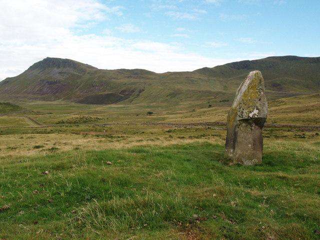 Standing stone by the Ffordd Ddu