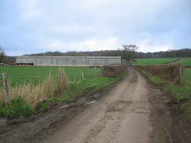 Cattle shed on Cock Road