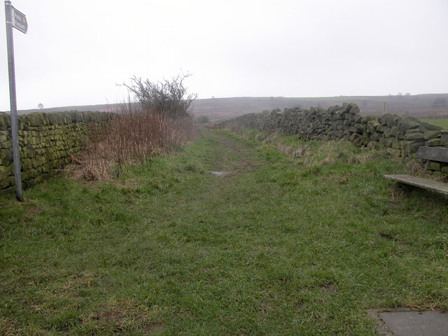 The path to the moors