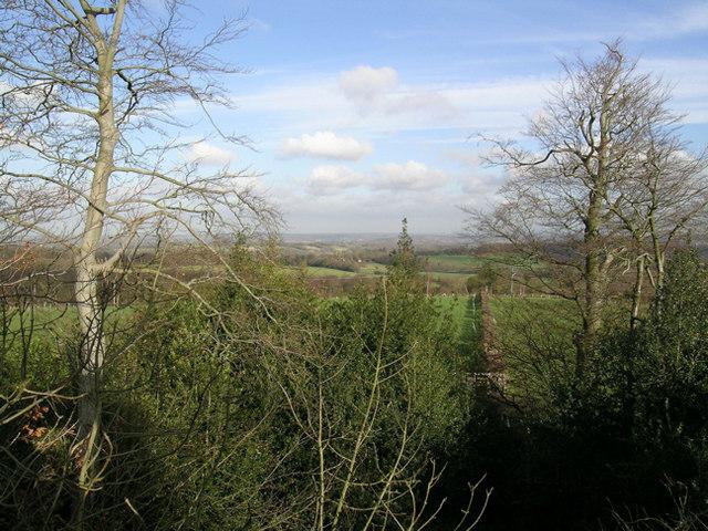 Jack Fuller's View