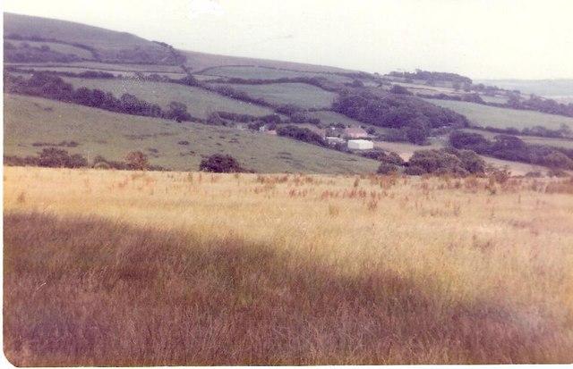 Farmland near Shipton Gorge