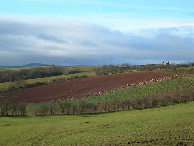 Lindston Farm