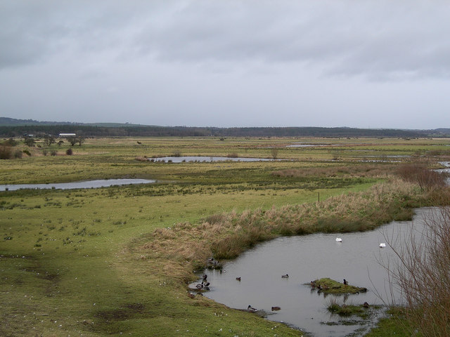 Caerlaverock Wetlands Centre