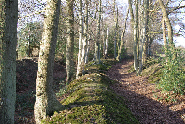 Old Trackways above Lower Parrock