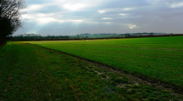 A ray of sunlight on Salthrop near Swindon