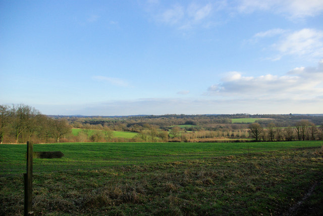 View from Wick Wood