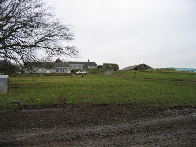 Hallington High Farm