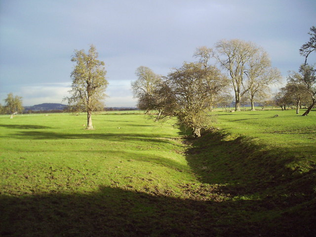 In the Carse of Gowrie