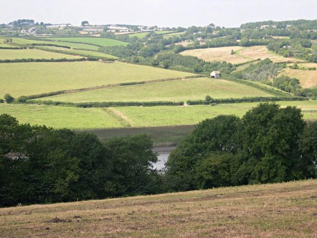 Farmland by the Tamar