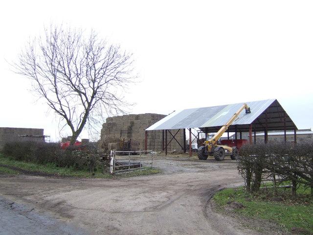 Sand Farm