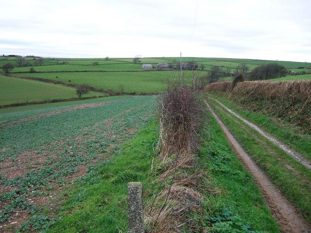 Renton Lane