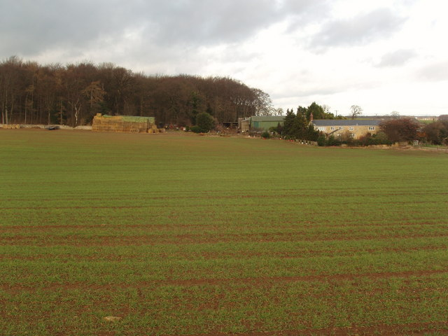 Moor End Farm, Boston Spa, near Wetherby