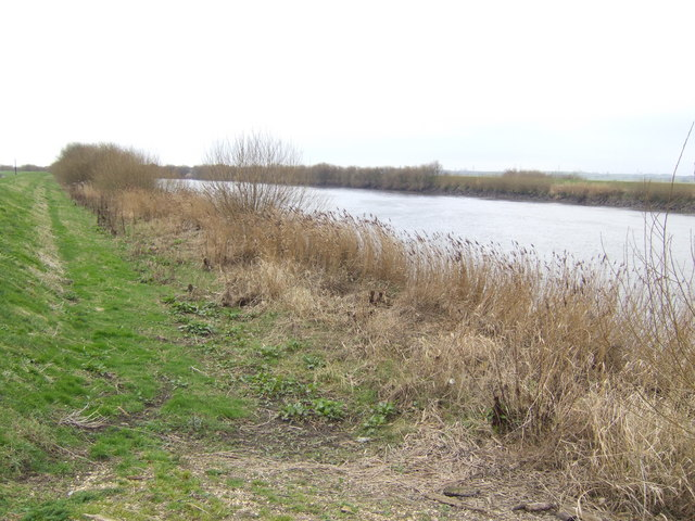 River Trent south of Susworth