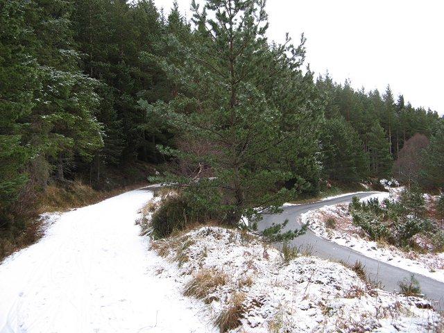 Glenmore Lodge road