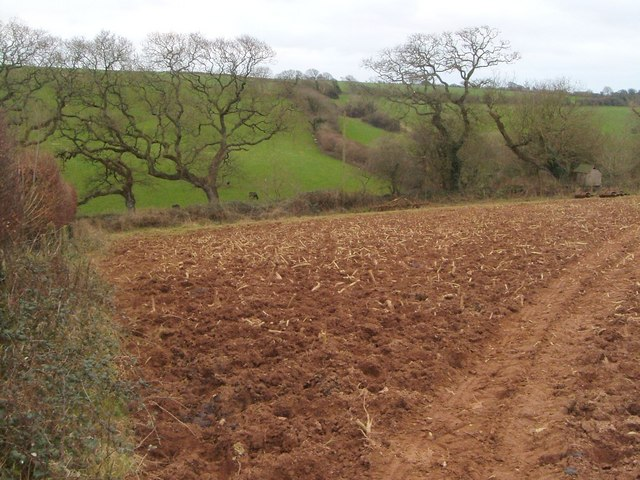 Ploughed field at Osborne Newton