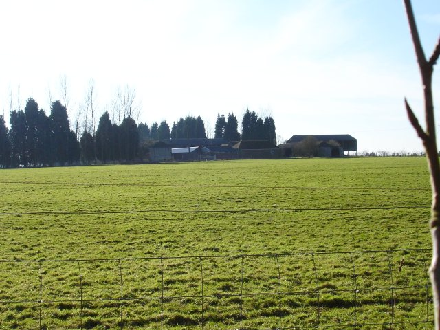 Merlewood Farm