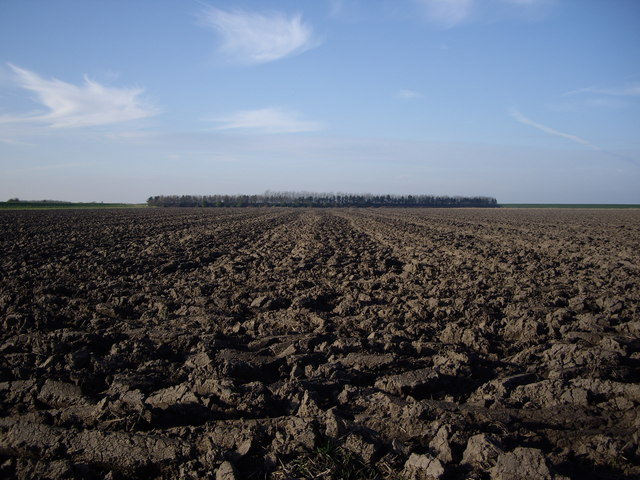 Tilled soil looking towards Admiralty Point