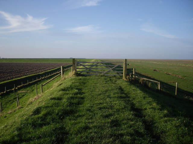 Footpath Along The Sea Line of The Lynn Deeps